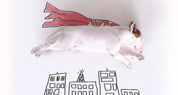 Au service des autres-super dog-gauloise-de-nuits-article-02-600